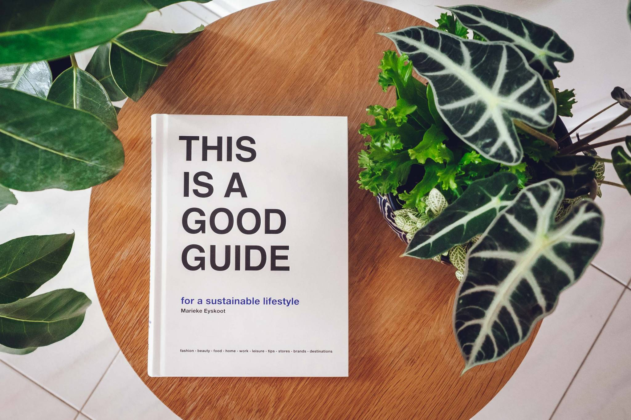 Good Guide Sustainable Lifestyle